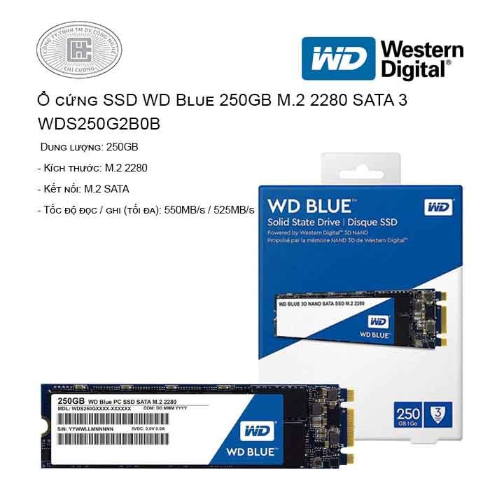 ổ cứng SSD WD 250GB WDS250G2B0B (M2-2280)