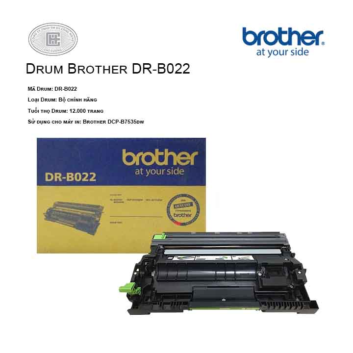 Drum mực in laser Brother DR-B022 ( cho máy HL-B2080DW,B2000D,B7535DW,B7715DW)